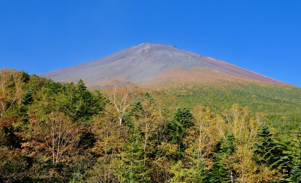 小富士からの富士